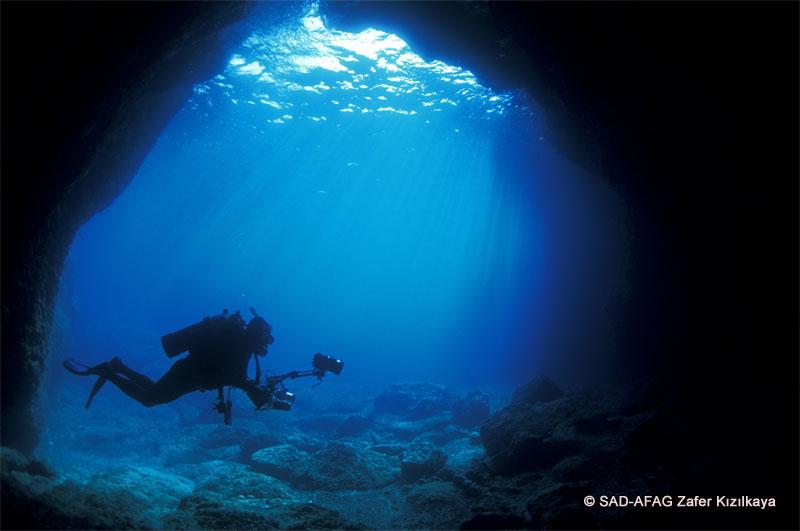 Cave diving and ecotourism around monk seal caves harm monk seals (c) SAD-AFAG Z. Kızılkaya