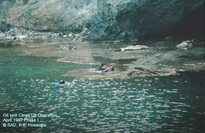 Gümüşlük Çavuş Island, Oil Pollution Clean-up Project. AFAG members collecting oil sludge in the sea, just in front of the monk seal cave ©1997 SAD-AFAG Burak Kasımhocaoğlu