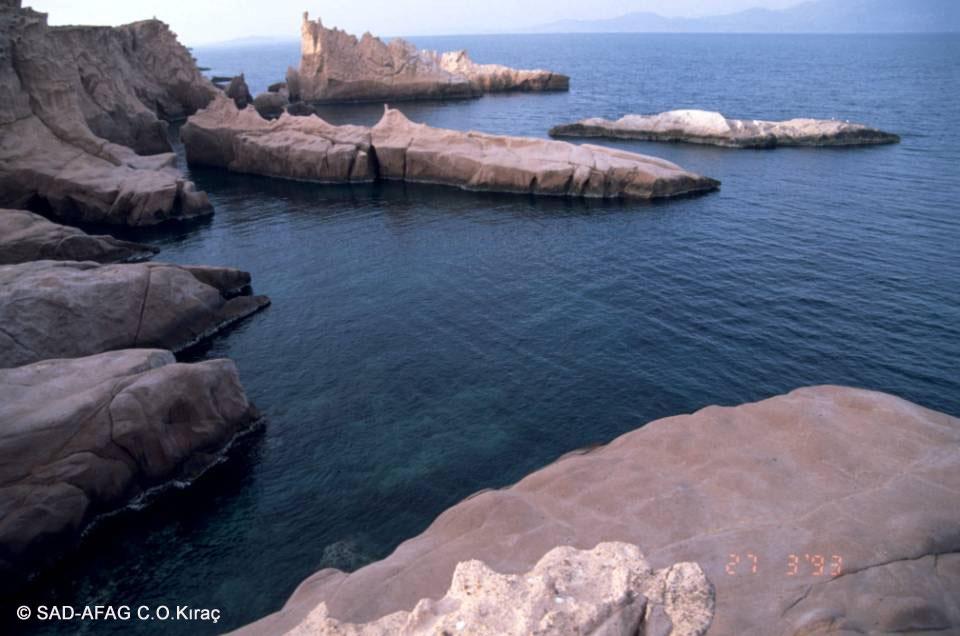 Foça, Orak Adası, Siren kayalıkları ©1993 SAD-AFAG C.O.Kıraç